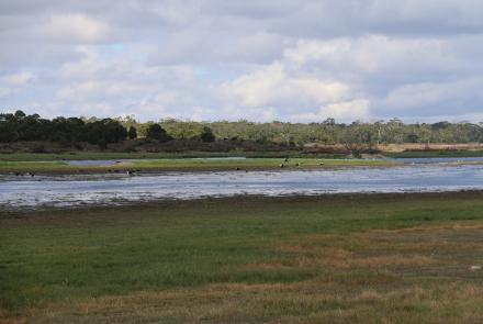 Lake Condah Mission (Image: Craig Greene)