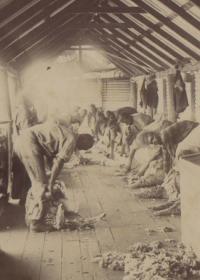 Pastoral Paternalism in the Pilbara