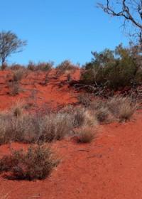 west Pilbara